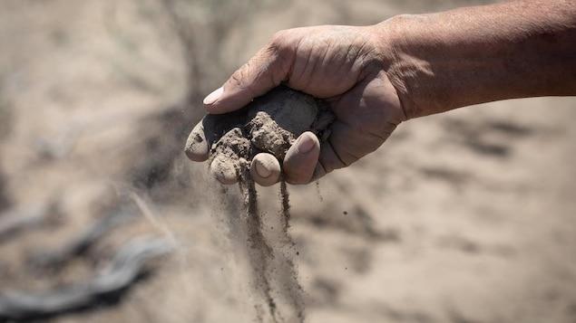 Gros plan sur une main prenant une poignée de terre sèche.