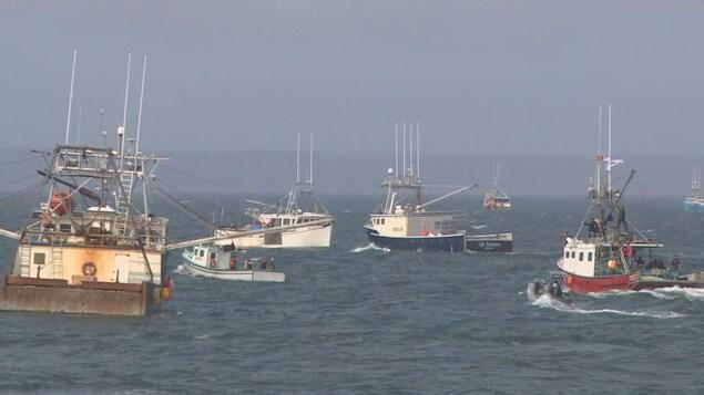 Plusieurs bateaux de pêche partent vers le large.