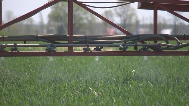 Plan rapproché de gicleurs sous un pulvérisateur de pesticides dans un champs.