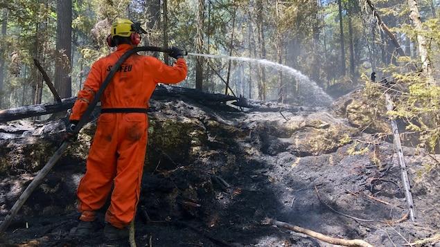 Un pompier de la SOPFEU qui arrose le sol dans une forêt.