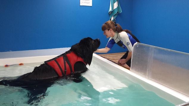 La co-proriétaire du centre Aqua Confort Animal, Caroline Côté, avec le chien-Terre-Neuve Auguste