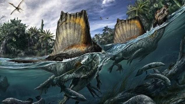 Représentation artistique de deux Spinosaurus aegyptiacus dans un cours d'eau.