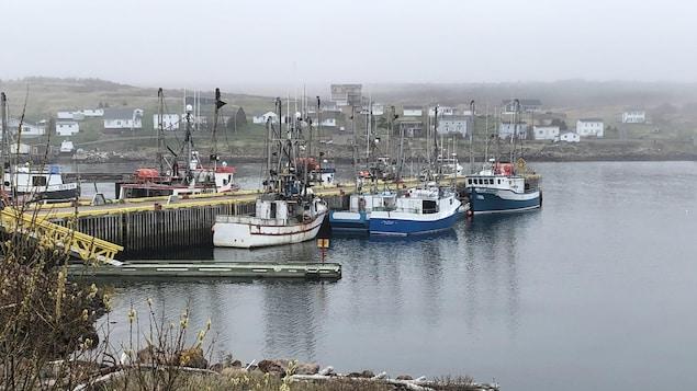 Des bateaux sur le bord d'un quai.