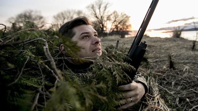 Stéphane Modat observe les oies à l'horizon