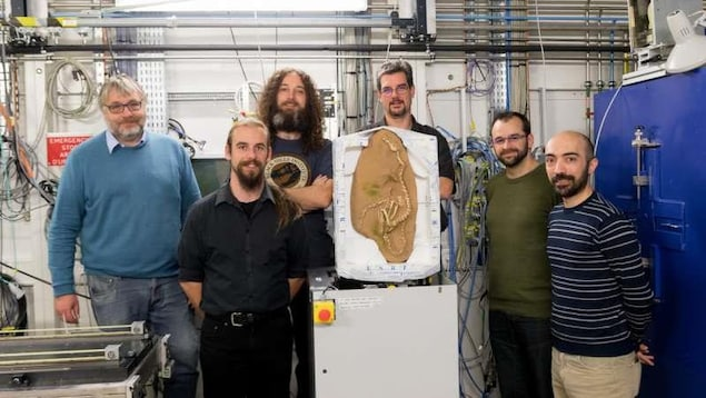 L'équipe du Synchrotron européen de Grenoble avec le fossile d'Halszka.
