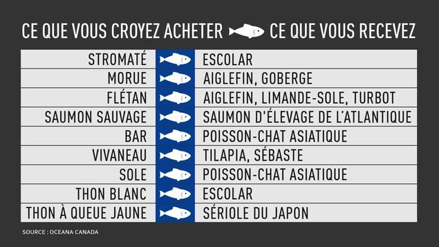 Un tableau présente des noms de poissons.