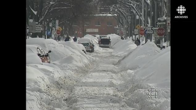 Bancs de neige et voitures ensevelies sous la neige aux abords d'une avenue résidentielle de Toronto qui n'a pas pu être déblayée.