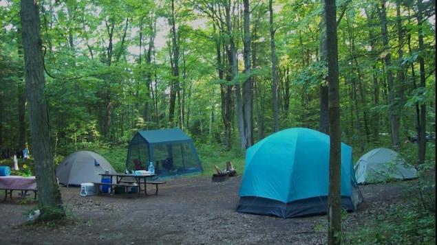 Des tentes sur un terrain de camping.