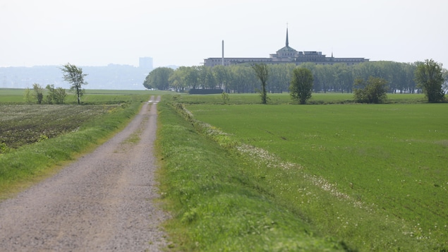 Un chemin traverse les terres de Sœurs de la Charité à Beauport.