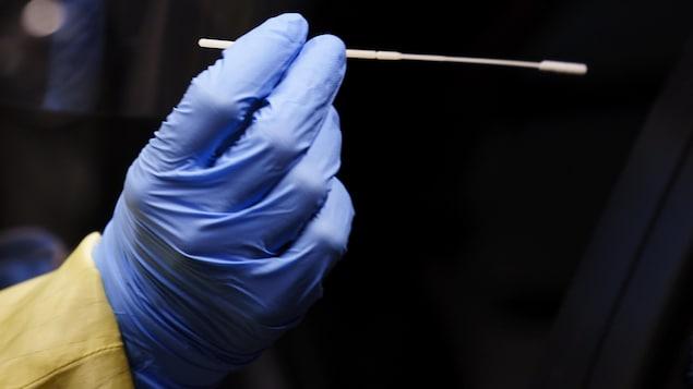 Une main recouverte d'un gant médical bleu tient un goupillon pour prélever un échantillon dans la narine d'une personne.