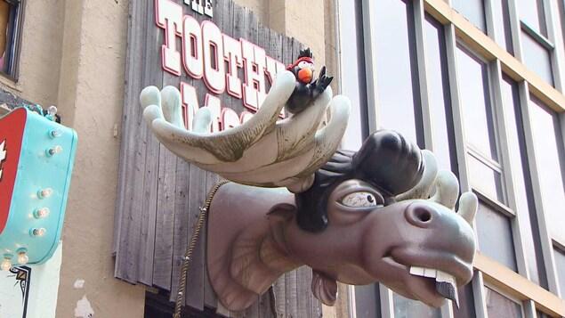 Un faux panache d'orignal au-dessus de la porte du bar The Toothy Moose.