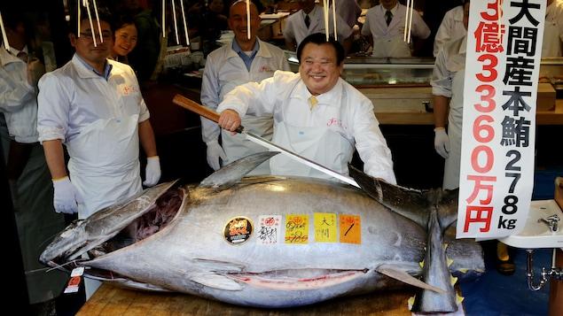 Kiyoshi Kimura, président de la chaîne de restaurants japonais Kiyomura, s'apprête à découper un thon qu'il a acheté pour  4 millions de dollars