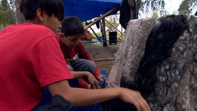 Des enfants autochtones de Yellowknife s'initient au tannage des peaux.