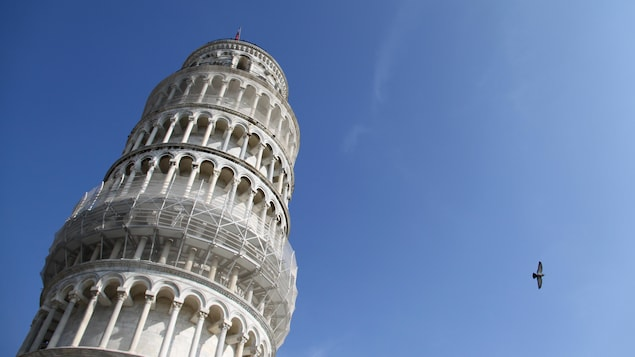 A bird flies past the Leaning Tower of Pisa October 31, 2009.  REUTERS/Sharon Lee  (ITALY - Tags: SOCIETY ANIMALS) - GM1E5CT0XCG01