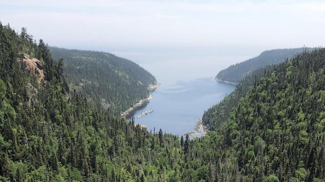 Une baie se déverse dans la mer au creux de la forêt boréale. Photo prise le 23 juin 2020.