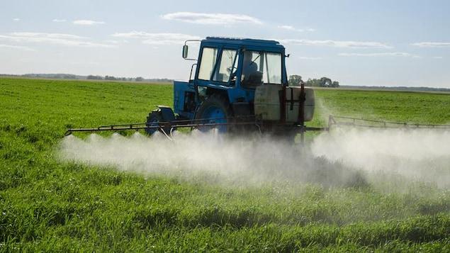 Un tracteur épand des pesticides.