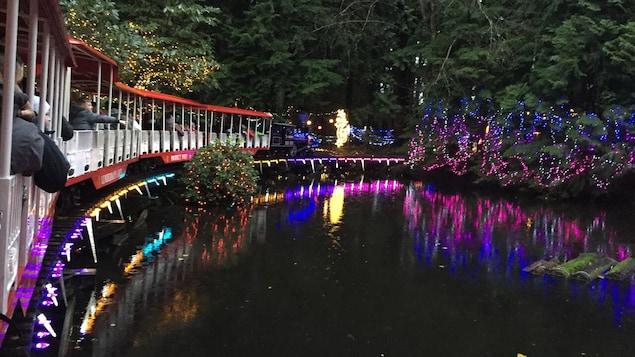 Le train avec des lumières sur les arbres.