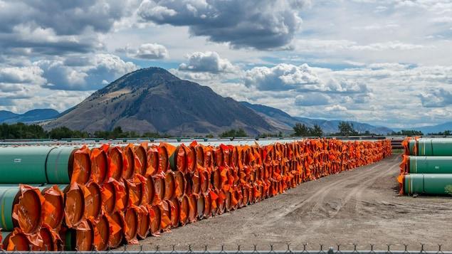 Des tubes en acier utilisés pour la construction d'un oléoduc dans le cadre du projet d'expansion Trans Mountain.