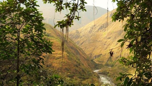 Sentier de trekking dans les Andes emprunté par Élizabeth Lahaie lors de son passage au Paititi Institute, au Pérou.
