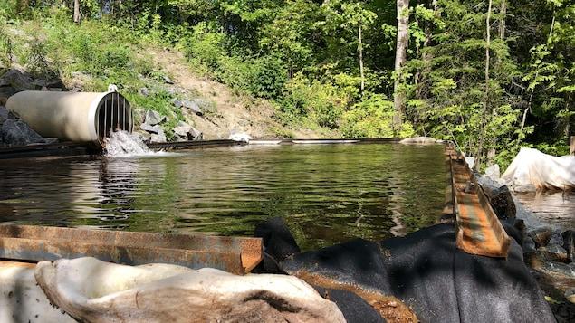 Un tuyau rejette l'eau provenant de l'usine de filtration du Lac-à-la-Pêche dans un cours d'eau.