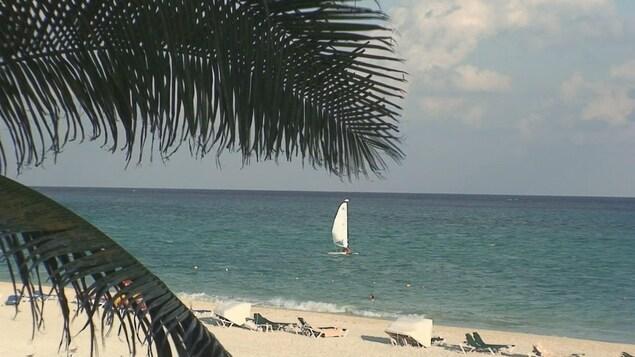 Une plage au soleil avec un voilier à l'horizon.