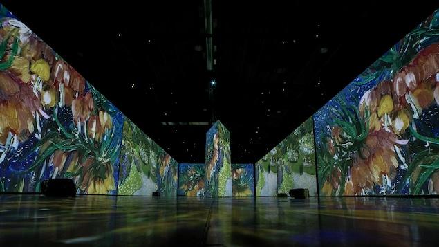 La salle imposante de l'expo Imagine Van Gogh à Montréal, sans visiteur. On voit les tableaux du célèbre peintre sur des écrans géants.