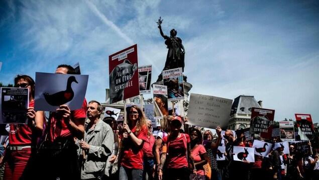 Des militants anti-viande brandissant des pancartes.