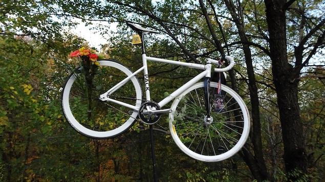 Un vélo blanc accroché aux arbres