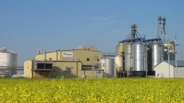 Une usine dans un champ de canola.