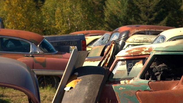 Plusieurs voitures rouillées sont entassées.