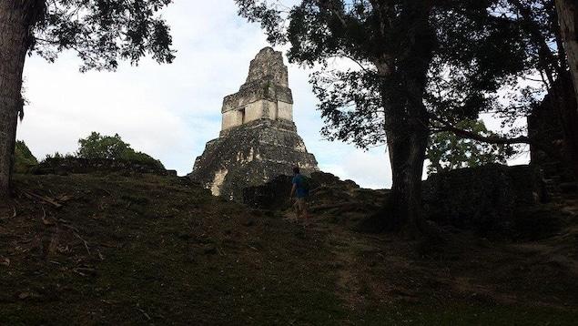 Ruinas mayas de Tikal, en Guatemala.