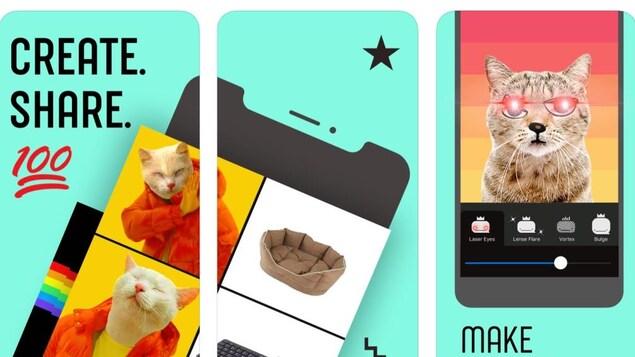 Photos promotionnelles de l'application Whale. On y voit des mèmes.