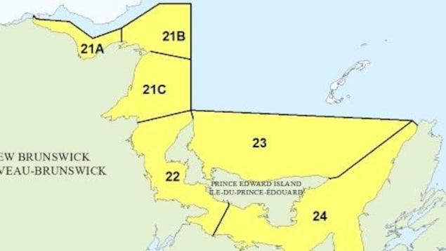 Zones de pêche de pétoncles dans le sud du golfe du Saint-Laurent