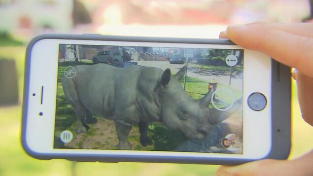 Un rhinocéros virtuel sur un téléphone intelligent.