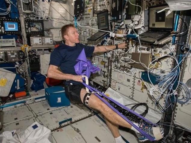 L'astronaute britannique Tim Peake a subi une échographie de la jambe en mai 2016 afin de collecter des données dans le cadre de l'étude Vascular Echo, la deuxième phase de l'expérience.