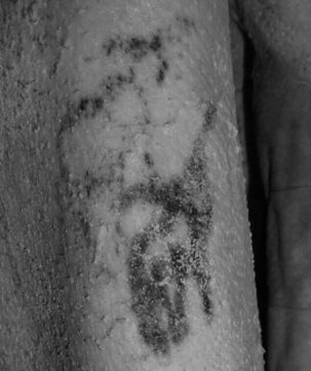 Un taureau sauvage et un mouton peuvent être observés sur l'épaule de la momie masculine.