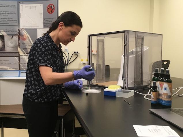 Nicoletta Faraone fait des expériences sur des tiques dans une boîte de Petri.