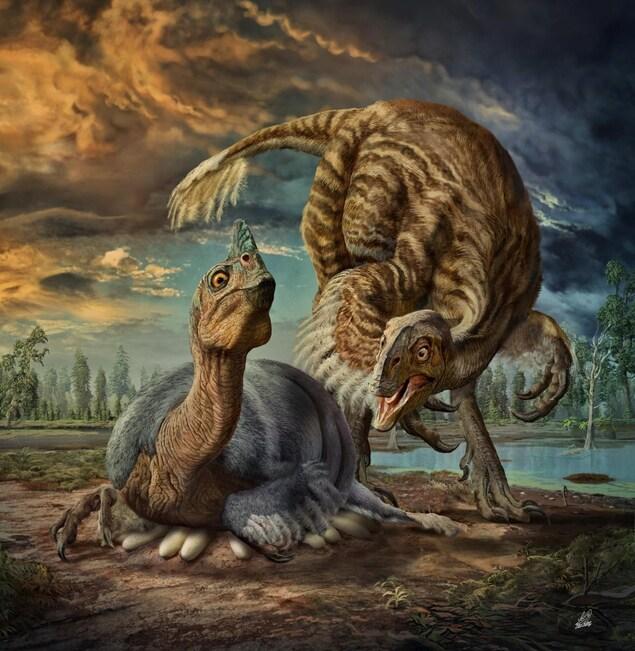 Impression artistique d'un oviraptorosaure couvrant ses oeufs.
