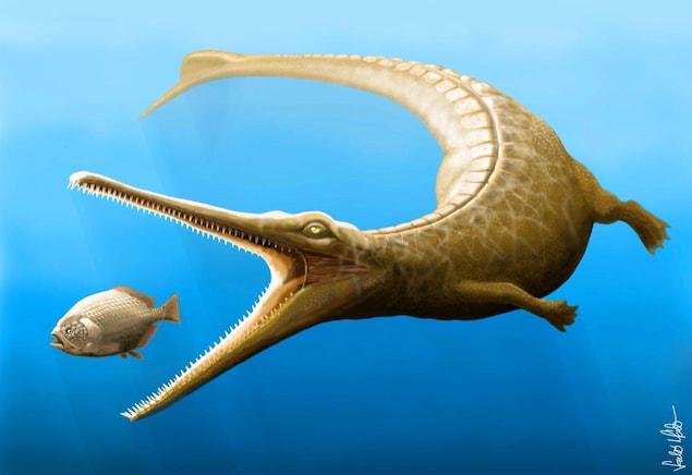 Représentation artistique d'un Magyarosuchus fitosi.
