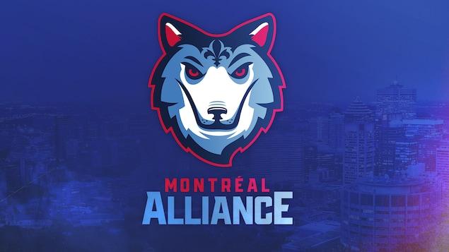 Une image du nom et du logo d'une équipe de basketball, qui représente un loup.