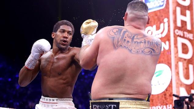 Deux boxeurs s'affrontent.