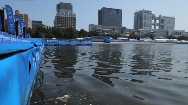 Le bassin d'eau où se dérouleront quelques épreuves olympiques et paralympiques en 2020 à Tokyo.