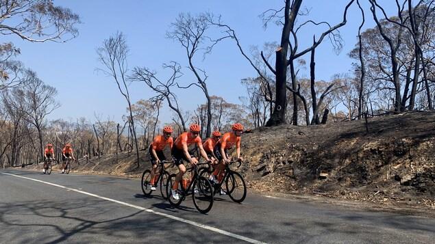 Des cyclistes à l'entraînement devant une nature dévastée par des feux.