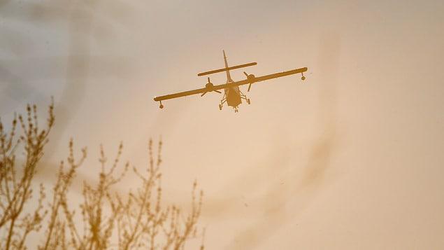 Un avion-citerne survole un incendie de forêt.
