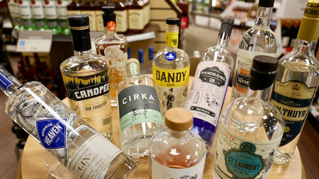 Du gin québécois à la SAQ.