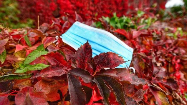 Un masque jetable au sol sur des feuilles rouges.