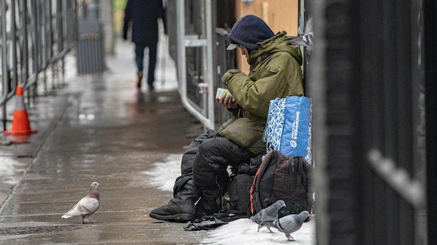 Un pigeon sur le trottoir observe un itinérant assis sur un gros sac.