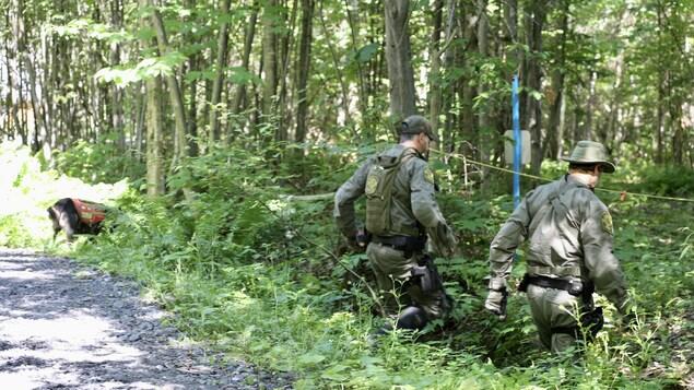Deux hommes en camouflage dans un boisé, le jour, un chien pisteur près d'eux.