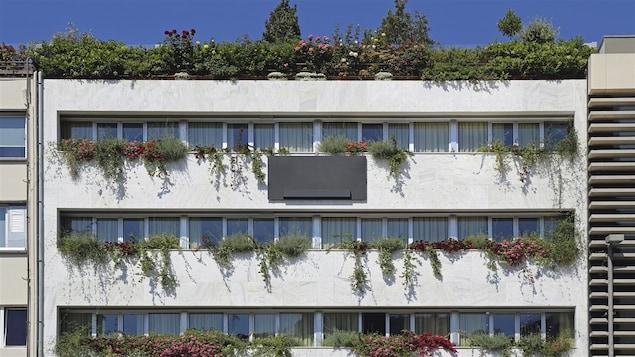 De la verdure pour rafraîchir un édifice urbain