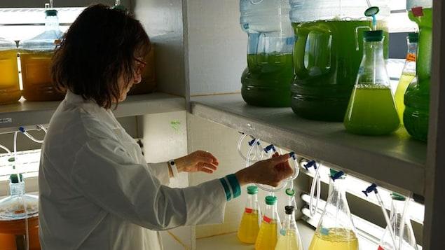 Une personne dans un laboratoire.